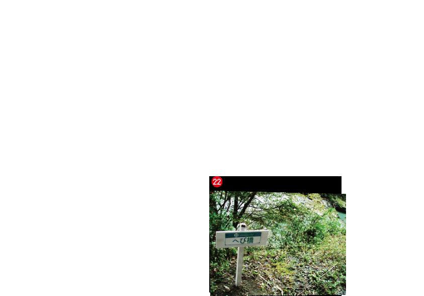 毛鉤釣り専用区(フライフィッシング・テンカラ) | 中野川倶楽部